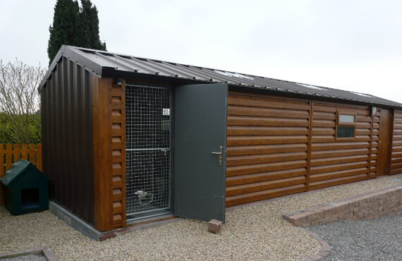 steel dog kennel and run